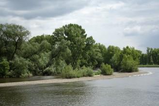 sedimenty Labe