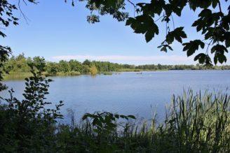PR rybník Kotvice