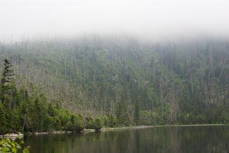 Plešné jezero - IMG_2344