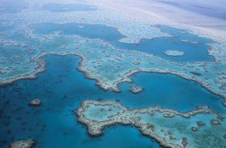 Velký bariérový útes Austrálie