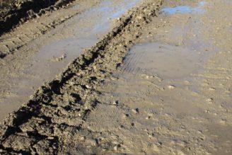 bahno - cesta těžba revitalizace - IMG_6747