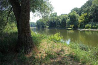 soutok Morava - Dyje - IMG_9259 - obr. 5