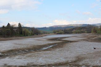 krajina vypuštěný rybník - IMG_4698