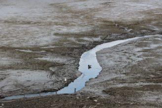 rybník vypuštěný - IMG_4702