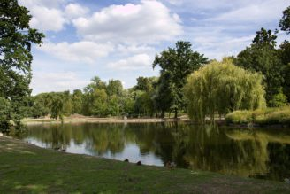 Stromovka revitalizace rybníky - IMG_5265_-_kopie