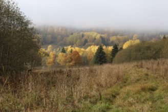 krajina-podzim-slunce-img_6292