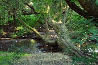 uneticky-potok