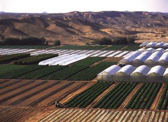 budiz-voda-zavlazovani-aravska-poust-izrael
