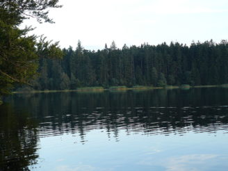 velky-parezity-rybnik-hana-kasparikova-wikipedie