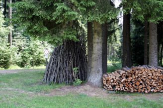 les-drevo