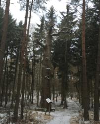 smetanuv_dub_u_nymburka