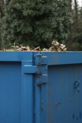 odpad-kontejner-a-strom-img_0834_u