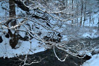 potok-zima