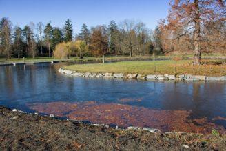 Stromovka - rybník revitalizace - tip - IMG_0079