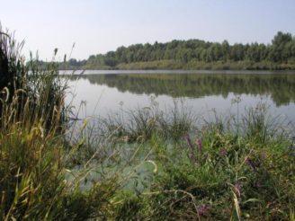 vestonicka-nadrz-rybnikarstvi-pohorelice