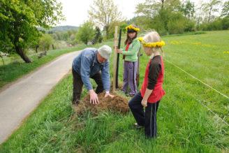 strom výsadba Nadace Partnerství
