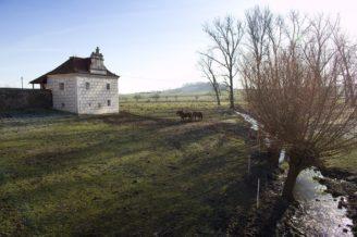 tvrz-krepenice-krajina-krcin-img_0456