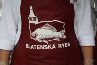Blatenská ryba - IMG_8032