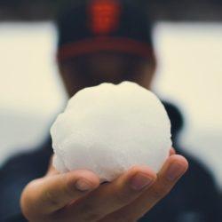 sněhová koule osel