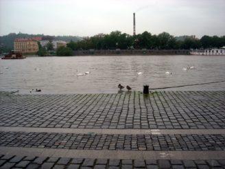 Náplavka - velká voda - DSCN5279_-_kopie