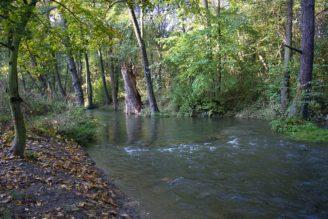 krajina Botič potok - IMG_8232