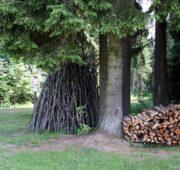 les dřevo