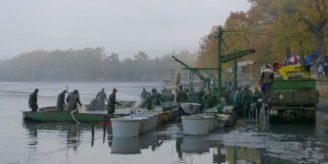 Rybářství Hluboká