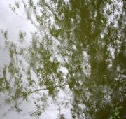 hladina déšť odraz - IMG_0397