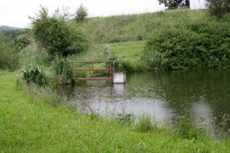 rybník 2 - déšť - IMG_0373