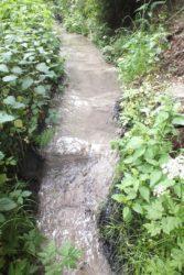 znečištěný potok ČIŽP - FRITAGRO