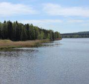 Hořejší rybník CHKO Brdy