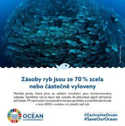OSN Zachraňte oceán