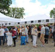 minipivovary festival 2017 - IMG_1961