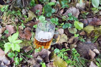 pivo - příroda - IMG_7258