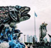 plasty oceán OSN