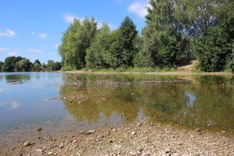 rybník - málo vody - IMG_2826