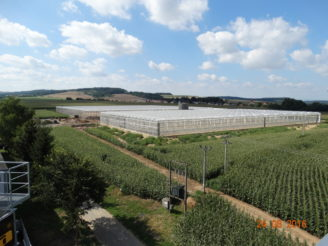 skleníky Haňovice