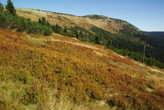 Barevný podzim - Studniční hora