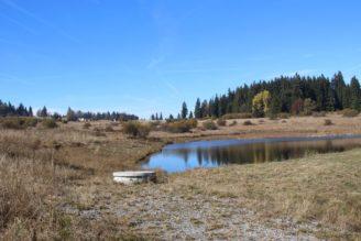 rybník malý podzim - krajina - IMG_6329