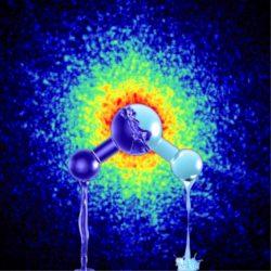 voda - osel - spektrum