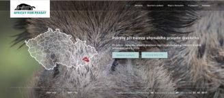 web africký mor prasat - Lesnická práce