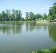 Olomoucký rybník - IMG_2197