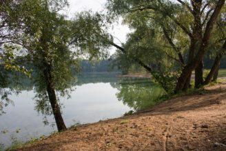 jezero Sadská - IMG_5955_-_kopie