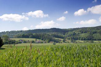 krajina zemědělství - IMG_0514