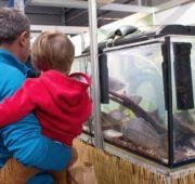 osvěta děti akvarium děti
