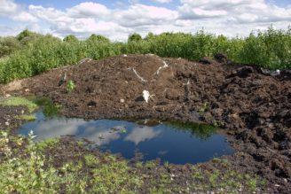 kontaminace zemědělství - IMG_5663