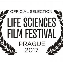 logo LSFF 2017