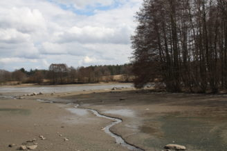 vypuštěný rybník IMG_1171