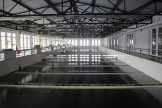 úpravna vody - IMG_0352