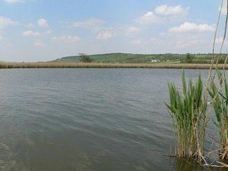 375px-Žehuňský_rybník